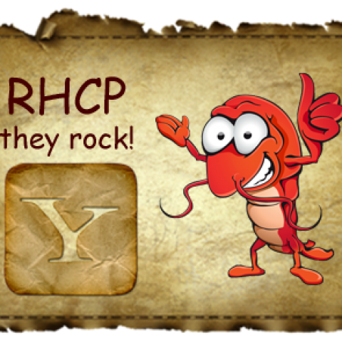 RHCP – The Adventures Of Rain Dance Maggie